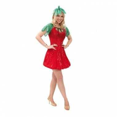 Foute aardbeien carnavals jurkje dames kleding