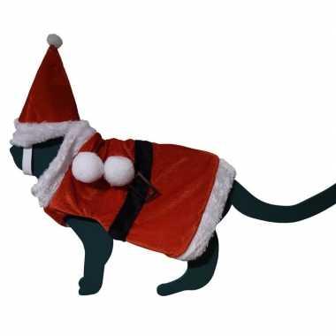 Foute katten / poezen kerstmanpakje met hoed one size kleding
