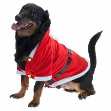 Kerst foute kleding voor honden