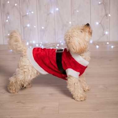 Kerstfoute kleding voor de hond