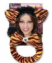 Foute carnaval set tijgerrin voor volwassenen kleding